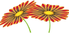 flower3_png